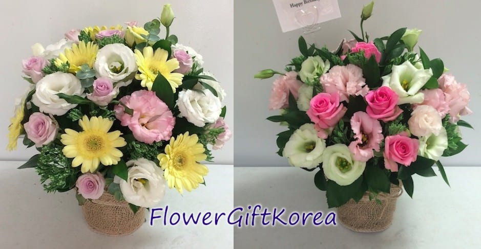 Send Deliver a flower of the day to Seoul South Korea today